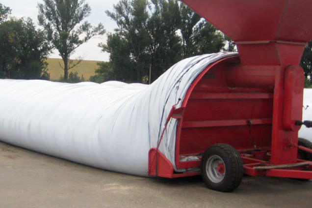 Silage (Preservation) of spent grain